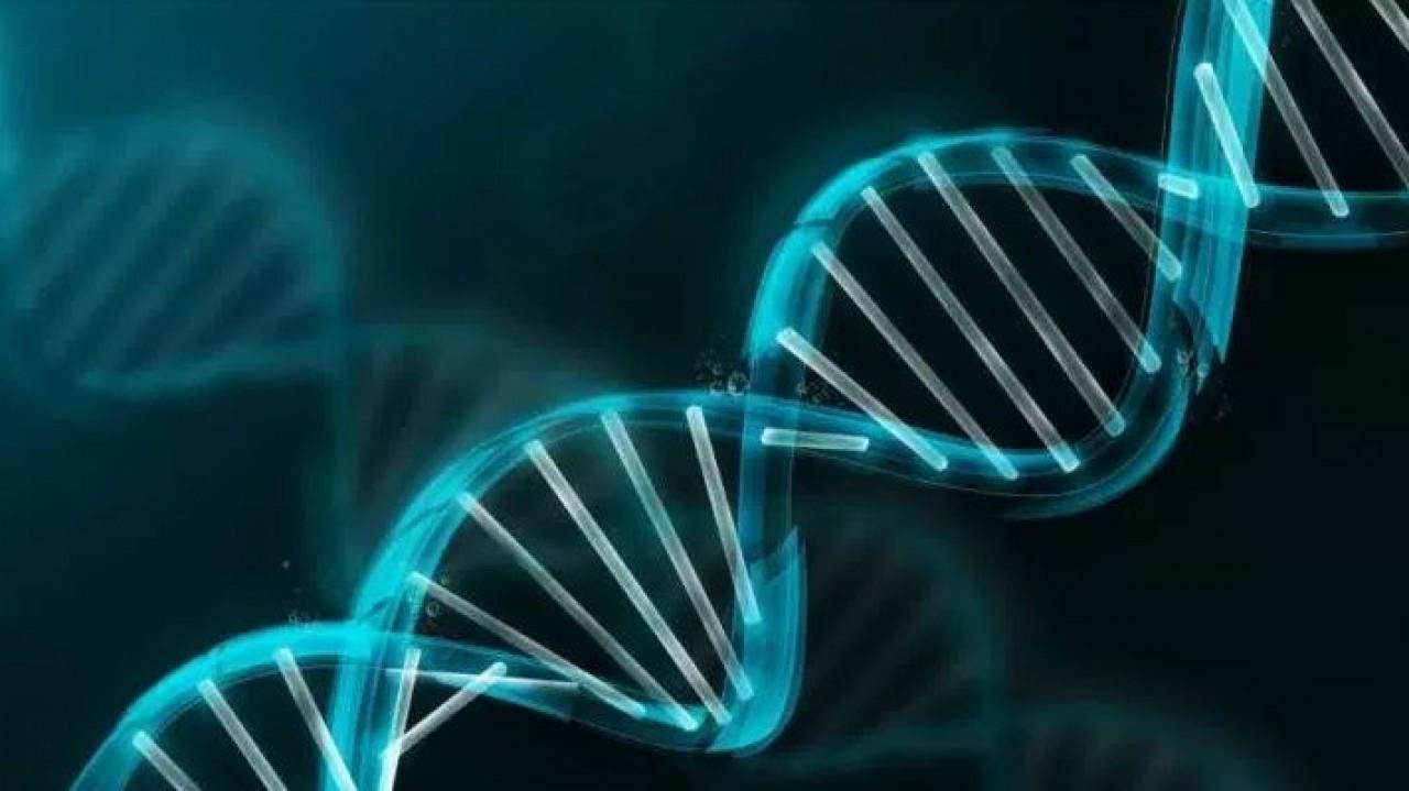 Bemygene Health Company trabaja en el diagnóstico genético