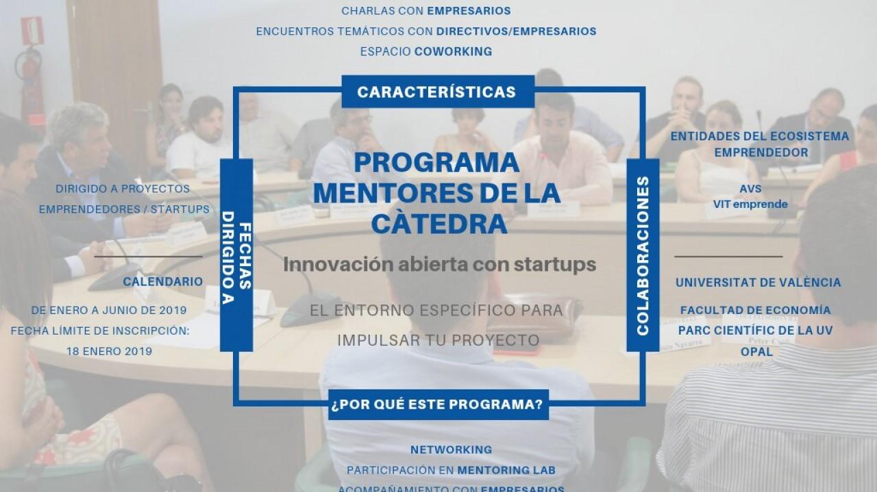PROGRAMA MENTORES DE LA CÀTEDRA (3) (1)